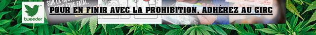 Cannabis au volant - Pétition